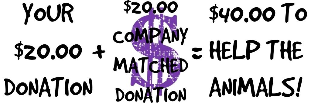 DONATION MATCH 4
