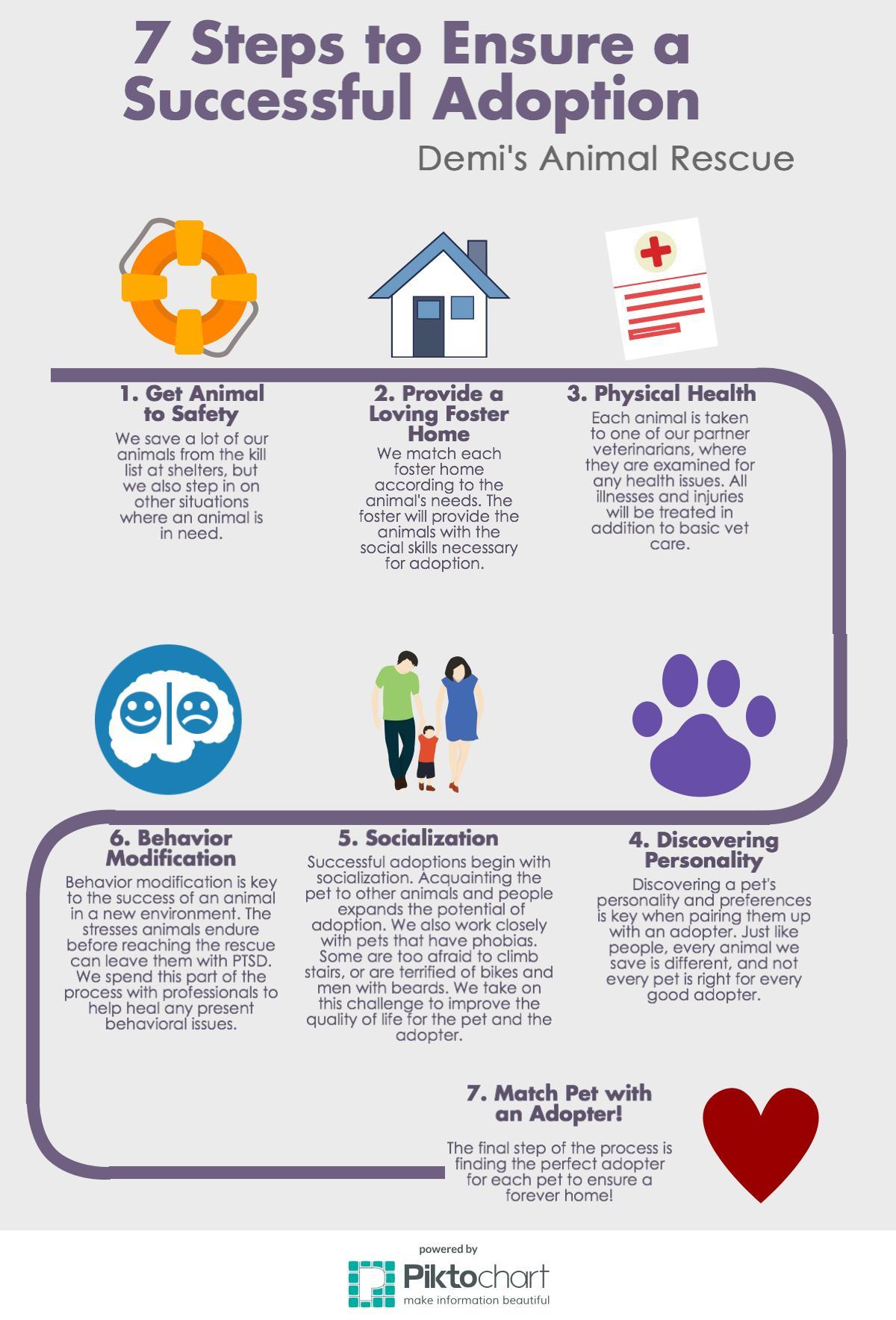 7 Step Checklist